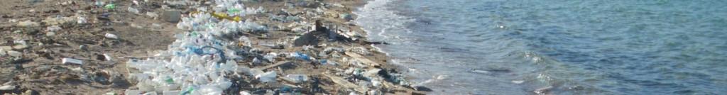 cropped-Beach_in_Sharm_el-Naga03-e14330083447851-1024x134