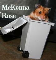 hamster_trashMCK.jpg